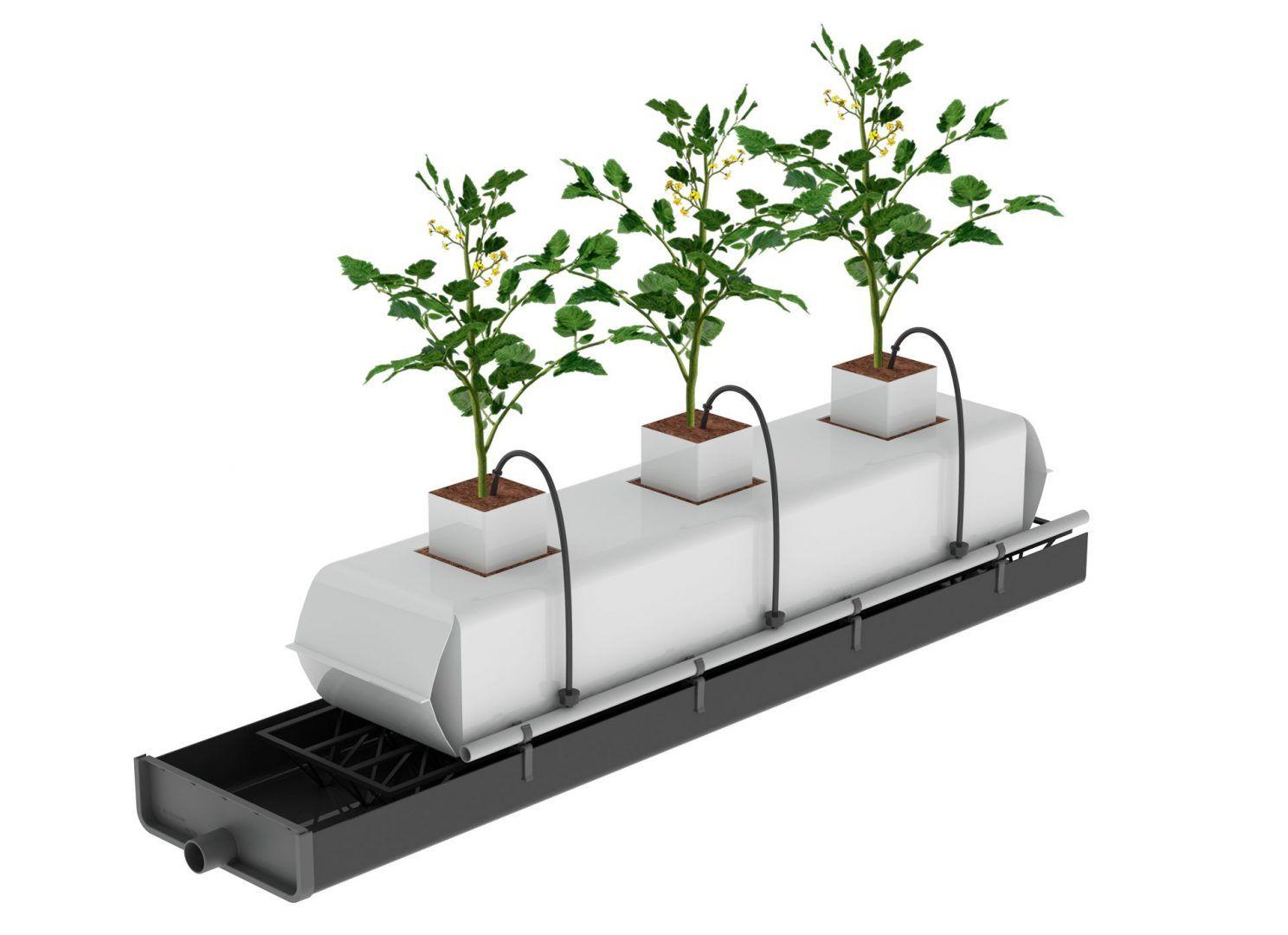 1.-Render-Eco-System